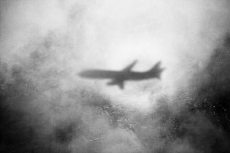 flydark.jpg